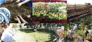 Dia da Agrofloresta