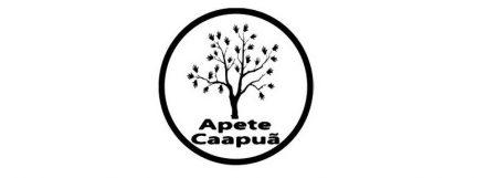 logo NAAC
